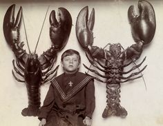 1915  A boy between two mounted lobsters caught off the New Jersey coast.