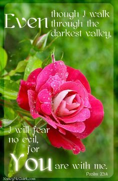 """Even though I walk through the darkest valley Inspirational quote from the book of Psalms. Bible Psalms, Bible Verses Quotes, Bible Scriptures, Psalm 23, Religious Quotes, Spiritual Quotes, Favorite Bible Verses, Jesus Is Lord, Spiritual Inspiration"