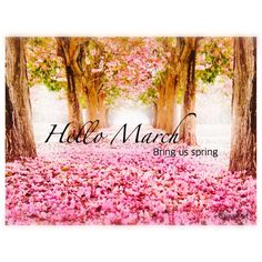 Exceptional Hello March