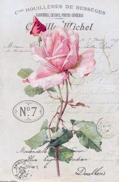 Vintage rose collage