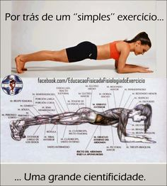 Plank Workout – Sixpack Exercise Healthy Fitness Ab Crunch Situp – PROJECT NEXT – Bodybuilding & Fitness Motivation + Inspiration Pilates Training, Pilates Workout, Gym Workouts, At Home Workouts, Pilates Solo, Bodybuilding Training, Bodybuilding Workouts, Fitness Del Yoga, Health Fitness