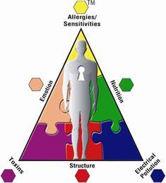 Holistic Medicine, Holistic Health and Alternative Care Options