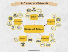 """This is part one in a series on nurturing thriving learners from AffectiveLiving and WeAreTeachers. """"Why do people go to school?"""" This is one of my favorite questions to ask my students… Favorite Questions, Flow State, Instructional Coaching, Engagement Sets, Positive And Negative, Health And Wellbeing, Optimism, Social Skills, Meant To Be"""
