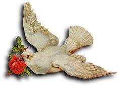 Victorian scrap: Pigeon
