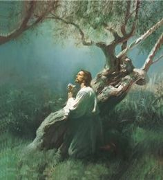 6 Necessary Attributes of the Atonement of Jesus Christ: Jesus Christ in the Garden of Gethsemane. Holy Mary, Arte Lds, Advent, Pictures Of Christ, Church Pictures, Lds Art, Atonement, Latter Day Saints, New Testament