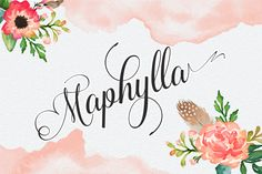 Maphylla 25% off by Groens on Creative Market