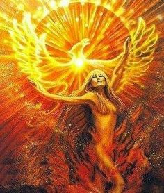 Phoenix Rising!!