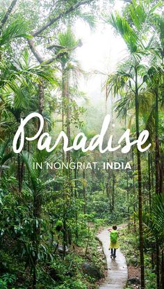 The village of Nongriat in Meghalaya state, India, is the perfect place to escape into nature in the northeastern states. Home to waterfalls, mountains, and the famous living root bridges, Nongriat is not a place to be missed! Read on for more stunning photos of Nongriat.