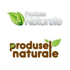 Logo realizat de catre echipa Web design Timisoara. Logo original si vectorial
