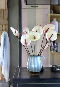 A cut Anthurium with a touch of pink around the edges could be a great eye-catcher in a Scandinavian interior. Flower Vases, Flower Arrangements, Nailart, Different Types, Pastel Flowers, Green Kitchen, Pretty Pastel, Scandinavian Interior, Succulents Garden