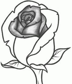 How To Draw A Rose Bud Step By Flowers