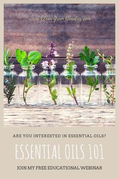 My new video course is designed to help you understand the complex nature of essential oils in simple language. Learn how essential oils can replace your cleaning, beauty products, and air fresheners while improving the overall health and wellness of your Essential Oil Starter Kit, Essential Oil Carrier Oils, Buy Essential Oils, Essential Oils For Babies, Therapeutic Essential Oils, Essential Oil Diffuser Blends, Young Living Essential Oils, Essential Oils For Depression, Essential Oils For Pregnancy