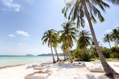 Podróż do Wietnamu to idealny pomysł dla osób pragnących poczuć smak tropikalnego lata w trakcie polskiej zimy. Dasz się ponieść przygodzie? http://feelthetravel.pl/ucieczka-przed-zima-do-wietnamu/
