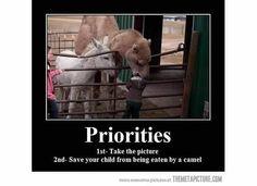 Priorities...!