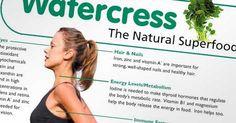 Watercress Nutritional Breakdown