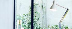 Créée par Sir Kenneth Grange et réinterprétée par Paul Smith, voici la lampe de bureau Type 75™ Edition One. #luminaire #design #designcontemporain #contemporarydesign #nedgis  #luminairedesign #anglepoise #lighting #annees30 #metal #designindustriel #industrialdesign #Type75#aluminium #sirkennethgrange #desklamp #lampedebureau #bureau #desk #paulsmith #multicolore #multi-color #chambre #bedroom #salon #livingroom #editionone