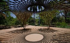 Olafur Eliasson, The Flower Archway, Jardín Botánico Culiacán