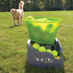 Automatic ball thrower. I needed this when I had Jasper. I'd throw a ball, he'd fetch it and then drop it at his feet and wait for another one!