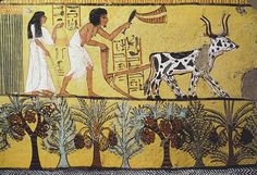 Sennedjem and His Wife in the Fields,  Dynasty 19. Sennedjem lived in Deir el-Medina during the reigns of Seti I and Ramses II. Tomb Wall Painting