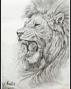 My new drawing sketch Lion Dotted Drawings, Cool Drawings, Drawing Sketches, Lion Tattoo Design, Sketch Tattoo Design, Tattoo Designs, Dog Tattoos, Animal Tattoos, Sleeve Tattoos