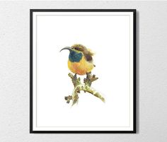 Yellow bird Archival watercolor print by ArtistWatercolor on Etsy, $20.00