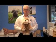 What to do when your dog or cat is choking