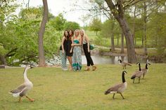 Surprise guests for the shoot. Even the geese love Antique Garden!!