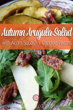 The fall harvests are still trickling in and begging to be taken advantage of, which means it's the perfect time for this Autumn Arugula Salad with Acorn Squash and Candied Pecans.