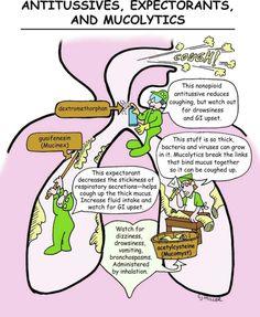 Pharmacology Mnemonics, Pharmacology Nursing, Nursing Tips, Nursing Programs, Nursing Scrubs, Med Surg Nursing, Ob Nursing, Family Nurse Practitioner, Nursing School Notes
