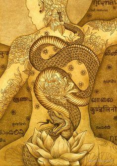 (disambiguation) Kundalini is a spiritual energy in yogic philosophy. Kundalini may also refer to: Tatouage Kundalini, Kundalini Tattoo, Kundalini Yoga, Yoga Kunst, Tantra Art, Esoteric Art, Yoga Art, Visionary Art, Sacred Art