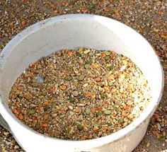 organic chicken feed recipe