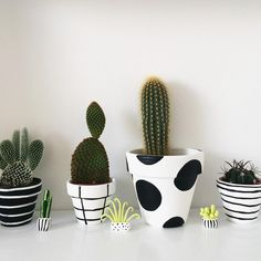 Idea Of Making Plant Pots At Home // Flower Pots From Cement Marbles // Home Decoration Ideas – Top Soop Painted Plant Pots, Painted Flower Pots, Cactus Decor, Plant Decor, Decorated Flower Pots, Decoration Plante, Clay Pot Crafts, Diy Clay, Cactus Flower