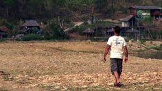 Un homme crie un nom dans un champ Regardez jusqu'a la fin - incroyable ! - http://www.newstube.fr/homme-crie-nom-champ-regardez-jusqua-fin-incroyable/ #ChiangMai, #LEléphantThaïlande, #NaturePark, #Thaïlande