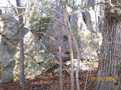 Murder Rock is located along the old Harrison / Springfield road also known as the Wilderness Road (Site is not marked, so unless you know somesone who knows where it is you probably would not be able to find it). Bad Guys known as the Baldknobbers and others would hide out in the rocks waiting to ambush travelers as they passed by. There is also a Legend that Civil War bushwacker Alfred Bolin and his gang also hid in the rocks to ambush travelers...A favorite site for those using Metal…