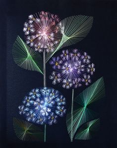 Forget-me-not. String art by Russian artist Olga Voronova Forget-me-not. String art by Russian artist Olga Voronova