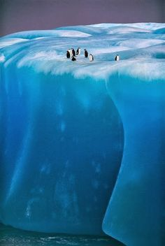 New Wonderful Photos: Antarctica I can honestly say that nature will never cease to amaze me- Antarctica Travel Destinations Honeymoon Backpack Backpacking Vacation Beautiful World, Beautiful Places, Amazing Places, Cool Pictures, Cool Photos, Dame Nature, Nature Sauvage, Tsunami, Places Around The World
