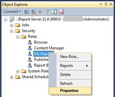 SQL Server Reporting Services Report Manager Tips and Tricks