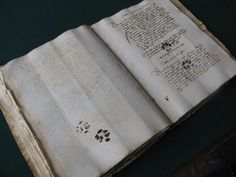 The government worker had this papers set in front of him, ready for his task. Along came his friendly yet intrusive feline, leaving pawprints across his work. Sound familiar? Except that this happened on March 11, 1445 and the proof was discovered on the pages of the 568-year-old manuscript by a medievalist!  via Quigley's Cabinet