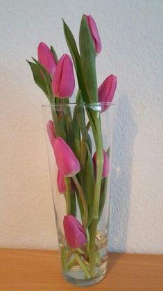 tulips garden care Tulpen in einer Vase Ir - Valentines Flowers, Valentines Day Decorations, Flower Decorations, Ikebana, Decoration Vitrine, Decoration Plante, Deco Floral, Floral Design, Fresh Flowers