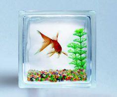 DecoBloc - for the beta fish