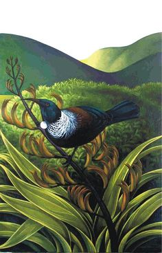 Tui bird on flaz plant with landscape miranda woollett nz artist Art Maori, Art Pictures, Art Images, Tui Bird, Polynesian Art, New Zealand Art, Bird Artwork, Bird Paintings, Nz Art