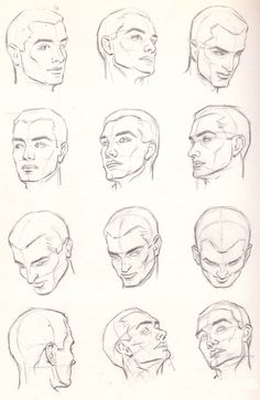 head anatomy poses, pencil drawing