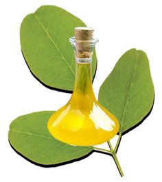 The natural goodness of Moringa oil dates back thousands of years ago. The Romans recognised the natural properties of Moringa oil and used it extensively in perfumes. The Egyptians also recognised its natural protective properties and used it on their skin to protect themselves from the harsh desert conditions. Both these uses have been documented by these ancient cultures. http://miracletrees.org/moringa_oil.html
