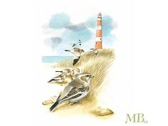 Lighthouse and birds by Marjolein Bastin