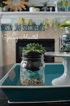 Mason Jar Planters | The DIY Adventures- upcycling, recycling and do it yourself from around the world.