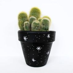 painted plant stars hand pot Hand Painted Plant Pot StarsYou can find Painted flower pots and more on our website Flower Pot Art, Flower Pot Design, Flower Pot Crafts, Clay Pot Crafts, Cactus Flower, Painted Plant Pots, Painted Flower Pots, Painted Pebbles, Cactus Plante