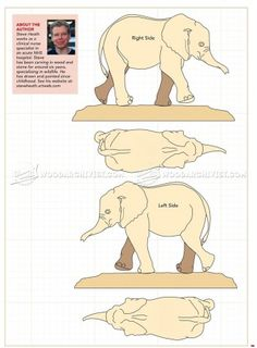 #248 Elephant Carving - Wood Carving Patterns - Wood Carving Patterns and Techniques