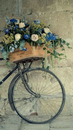 Flower Basket Bicycle Wallpaper
