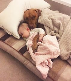 Dogs and puppies are adorable all by their furry selves. Dogs And Kids, Animals For Kids, I Love Dogs, Animals And Pets, Wild Animals, Funny Animal Pictures, Cute Funny Animals, Cute Baby Animals, Pitbull Pictures