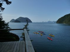 Kayakers come to the cabins in Humpy Cove, Alaska